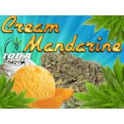 Mandarine Cream