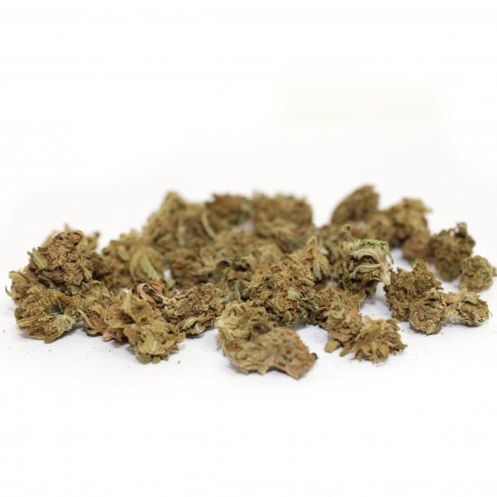 Gelato Small Buds